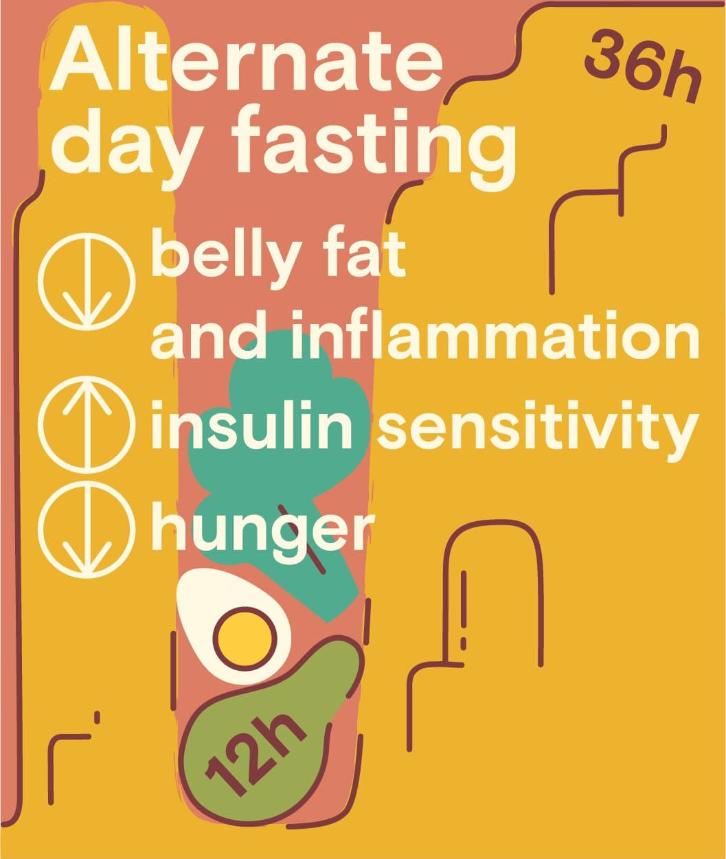 alternated day fasting benefits